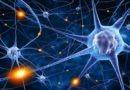Strategies to boost Mitochondria health