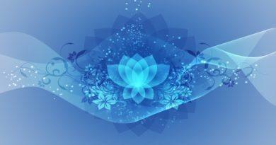 The 7 Chakra LIFE energy…