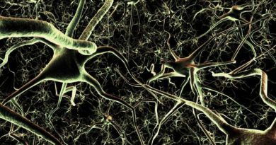 Diabetic Neuropathy: Nerve disorders and damage
