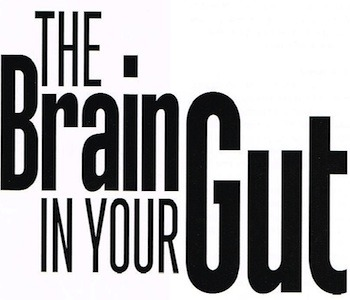 brain-in-the-gut