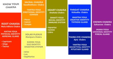 The 7 Chakras: Know the Seven Chakra Life energy