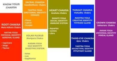 The 7 Chakras: Know the Seven Chakra Life energy