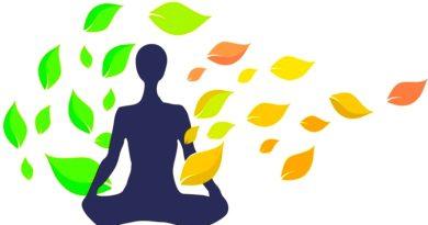 Prana, Pranic energy and Pranayama