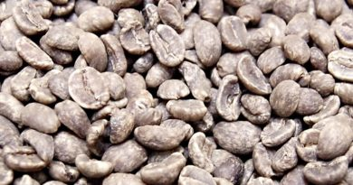 Decaf Coffee Health Benefits