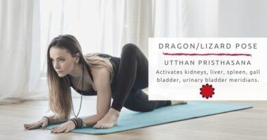 Dragon yoga pose activates kidneys, liver, spleen, gall bladder, urinary bladder meridians.