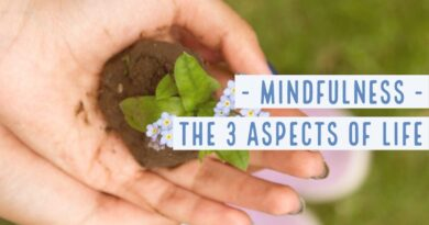 Mindfulness balances the 3 Aspects of Life