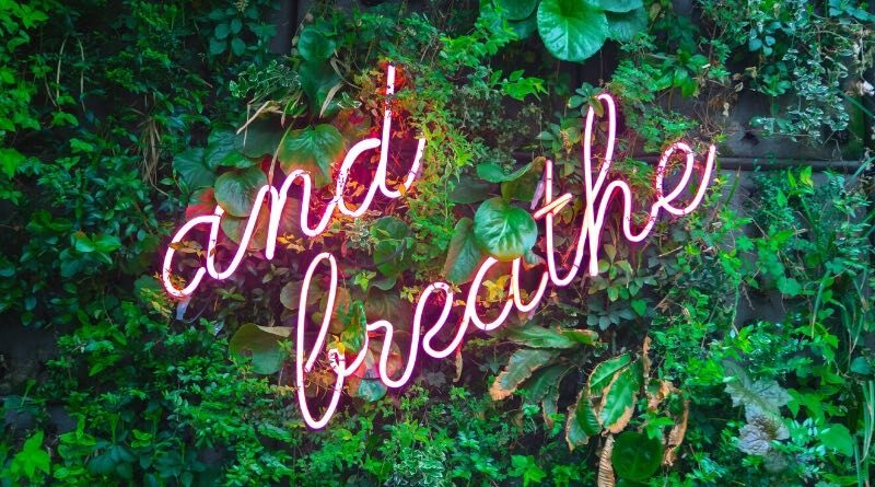 sine wave diaphragmatic yogic breathing...