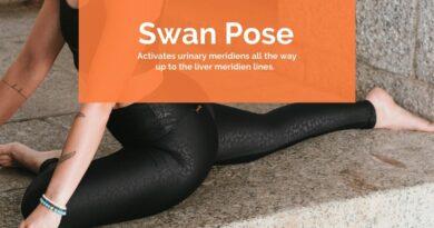 Swan Pose – Hansa asana