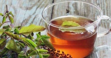 Tulsi Drink – Health Benefits